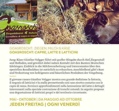 kaesesommer2021_goasroscht