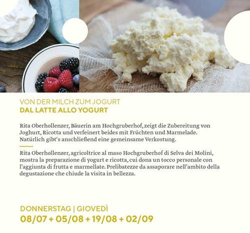 kaesesommer2021_milch-zu-jogurt